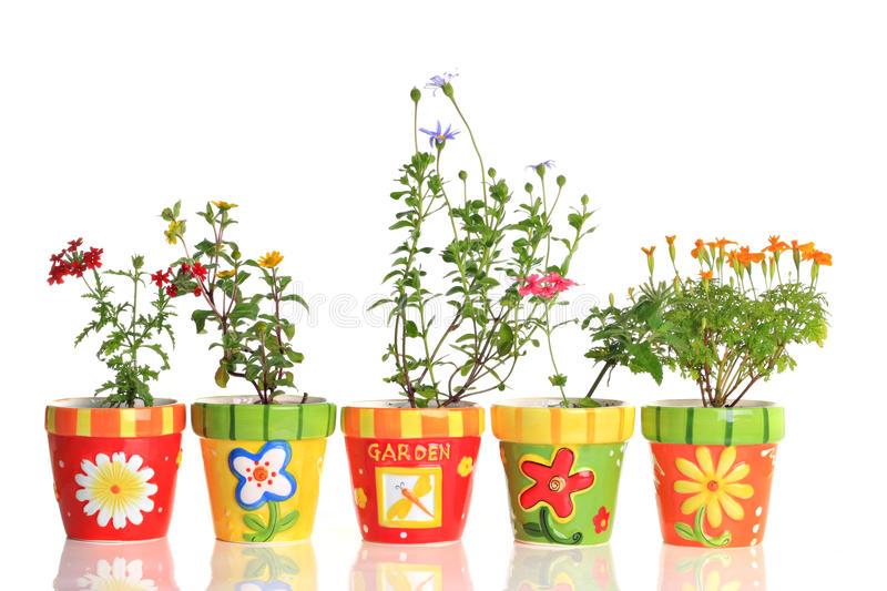 گلدان برای گل
